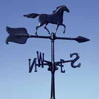 horse24 (12K)